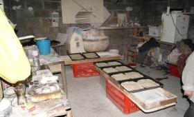 Panificio con blatte e scarti del legno nei forni, sequestro shock nel Casertano