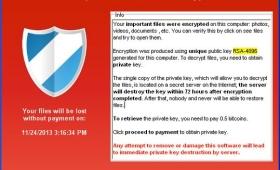 Cryptolocker, virus che chiede il riscatto. Sette arresti